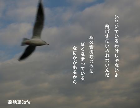 _1Rs[.jpg