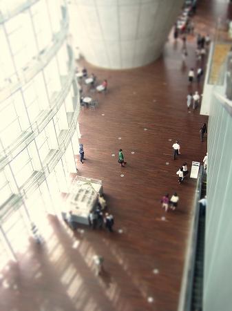 IMG_7639_edited-1.jpg