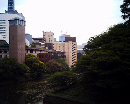 genie�VIMG_000chidori1.jpg