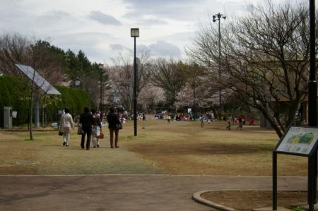 yumemigasakiIMGP0001 (12).jpg
